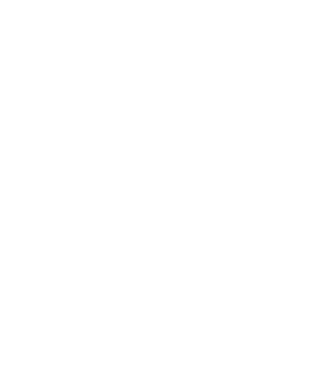 Made in Polaroid